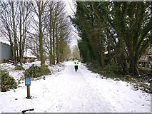 NZ1465 : Wylam Waggonway, approaching the site of Heddon on the Wall Station by Andrew Curtis