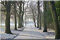 SK4833 : Snow-covered path in West Park by David Lally