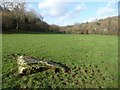 ST4593 : Stone in the field near the Castrogi Brook opposite Cribau Mill by Jeremy Bolwell