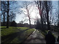 TQ3473 : View of houses in Forest Hill from Horniman Gardens #2 by Robert Lamb