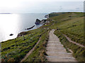 SY8180 : Steps on the footpath between Lulworth Cove and Durdle Door by Phil Champion