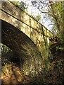 SX8079 : Bridge over the railway path, Parke by Derek Harper