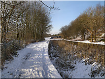 SD7506 : Manchester, Bolton and Bury Canal by David Dixon