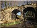 SX7880 : Railway bridge, Knowle by Derek Harper