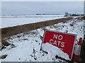 TL4490 : NO CATS by Richard Humphrey