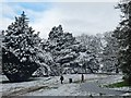 ST3087 : Walkers in the snow, Belle Vue Park by Robin Drayton