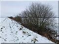 TL4587 : Old Mill Drove near Manea in winter by Richard Humphrey