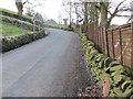 SE0320 : Foxen Lane by Peter Wood