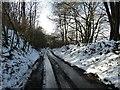 SP8907 : Hale lane - view downhill by Rob Farrow