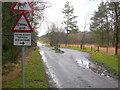 SY8291 : Cattle Grid on Throop Heath by Nigel Mykura