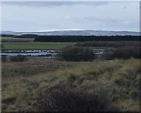NZ2796 : View from Druridge Links by Russel Wills