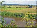 SO8425 : Farmland at Hasfield Ham by Trevor Rickard