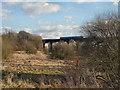 SJ5694 : Sankey Viaduct by David Dixon
