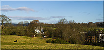 NX9479 : East Cluden beyond Cluden Water by Hugh Close