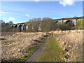 SJ5694 : Nine Arches Viaduct by David Dixon