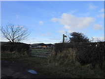NZ2796 : A path near High Chibburn Farm by Ian S