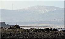 J4482 : Low water, Belfast Lough by Albert Bridge