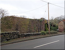 SO6606 : Western buttress of a dismantled railway bridge, Blakeney by Jaggery