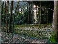 SY8583 : Lulworth Estate Wall by Nigel Mykura