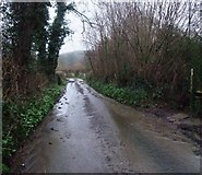 SY4797 : Camesworth Lane, Oxbridge by Tim Heaton