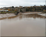 ST5394 : Chepstow Castle viewed from the Old Bridge, Chepstow by Jaggery