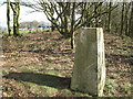 SE3013 : Woolley Edge [Beacon Hill] by Rude Health