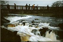 SE0063 : Linton Falls footbridge by Stephen Craven