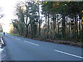 SY8783 : Cyclist on Povington Heath by Nigel Mykura