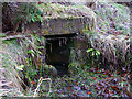 SD3186 : St Cuthbert's Well, Colton by Karl and Ali