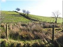 H5574 : A low hill, Merchantstown by Kenneth  Allen