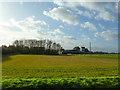 TL2646 : Common Farm by Alexander P Kapp