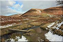 SK1695 : Footbridge across the stream by Peter Church