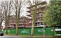 J3271 : Nos 36-38 Windsor Park, Belfast (2013-2) by Albert Bridge