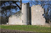 SO8646 : Pirton Castle by Philip Halling