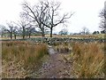 NY3025 : Footpath near Threlkeld by Oliver Dixon