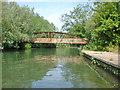 TL4457 : Footbridge over the Cam, Coe Fen, Cambridge by Peter Church