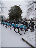 TQ2882 : Bikes for hire, Regent,s Park NW1 by Robin Sones