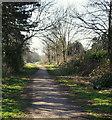 SK4835 : Former Derby Canal Recreational Route, Sandiacre Lock Area by David Hallam-Jones