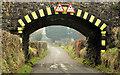 J2485 : Ballymartin railway bridge, Templepatrick (2013-3) by Albert Bridge