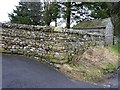 SD8889 : Cemetery wall by James Allan