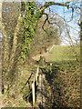 TQ1715 : Footbridge near Pepper's Pond by Simon Carey
