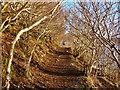 NG4943 : Scorrybreac path by John Allan