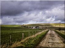 SU0664 : Field Barn on Horton Down by Gillie Rhodes
