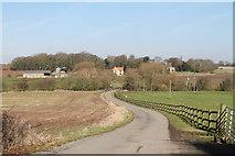 SK7260 : Road to Beesthorpe Hall by J.Hannan-Briggs