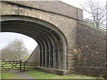 NY6753 : Impressive Bridge Supports, South Tyne Trail, Knarsdale by Les Hull