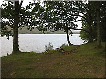 SD2992 : Coniston Water by David Purchase