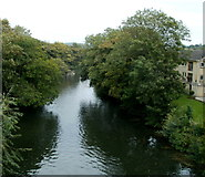 ST7565 : River Avon viewed from Cleveland Bridge, Bath by Jaggery