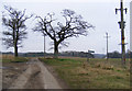 TM4470 : Lymballs Lane & the footpath to White's Lane by Adrian Cable