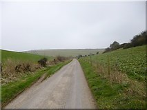 ST7700 : Cheselbourne, country lane by Mike Faherty