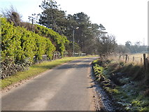 NS2005 : Road to Kirkoswald by Billy McCrorie